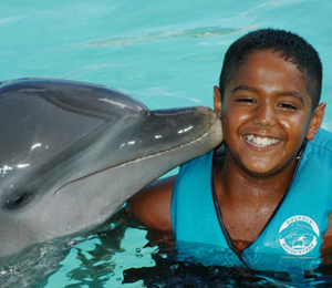 Dolphin Tours in the Bahamas